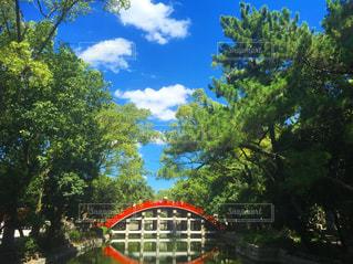 風景 - No.453804
