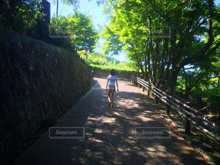 風景 - No.453808