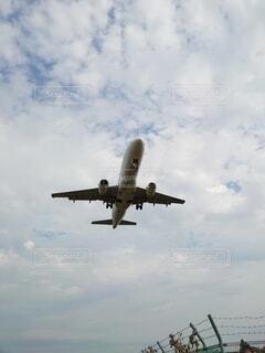 真下から見る飛行は大迫力!の写真・画像素材[3910349]
