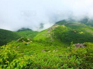 緑豊かな雄大な山の写真・画像素材[3914678]
