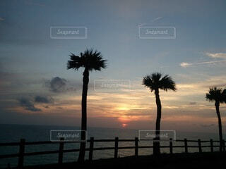 奄美大島の海に沈む太陽の写真・画像素材[3914687]