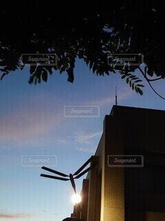 巨大トンボが空を舞うの写真・画像素材[3923017]