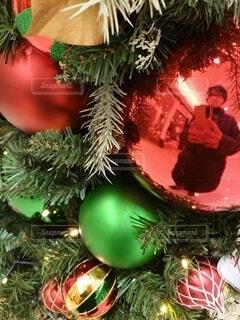 クリスマスツリーの飾りに映り込む私の写真・画像素材[3973703]