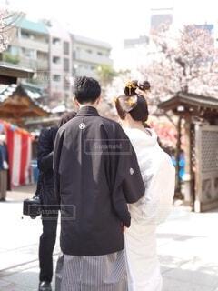 春,神社,梅,後ろ姿,撮影,美しい,人物,人,結婚,カメラマン,前撮り,和装,袴,婚約