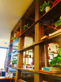 インテリア,植物,本,棚,ディスプレイ