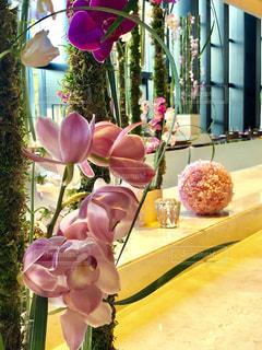 テーブルの上の紫色の花一杯の花瓶の写真・画像素材[1369382]