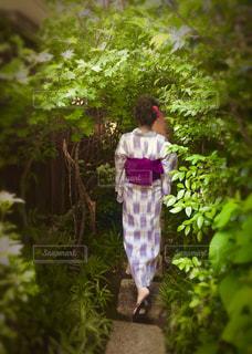 庭に立っている男の写真・画像素材[1409452]