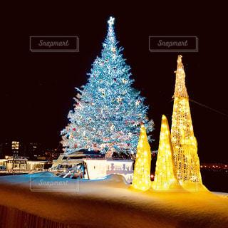 クリスマスツリーの写真・画像素材[1680528]