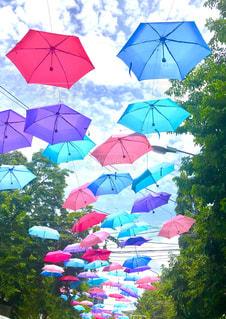 カラフルな傘の写真・画像素材[1817657]