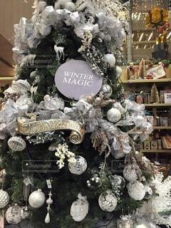 クリスマスツリーの写真・画像素材[3975361]