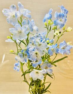 淡い水色の花束の写真・画像素材[4168681]
