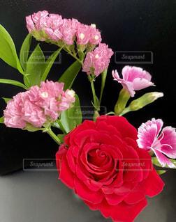 明るい花束の写真・画像素材[4407772]