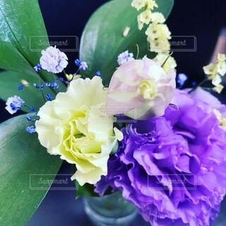 花,屋内,花束,かわいい,紫,オシャレ,可愛い,お洒落,草木,おしゃれ,上品
