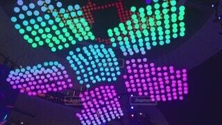 花,カラフル,アート,音楽,明るい,電飾,ピカピカ,テキスト,演出,エンターテイメント,赤紫色