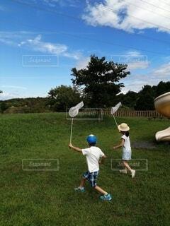 夏に虫とりをする子供たちの写真・画像素材[4003481]