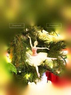 木のクローズアップの写真・画像素材[3987247]