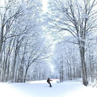 雪の並木道と私の写真・画像素材[3929759]