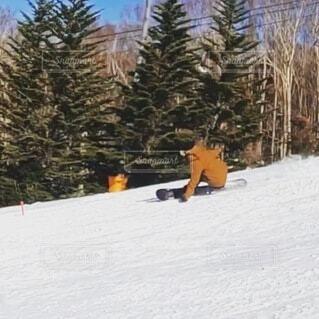 冬,雪,屋外,雪山,丘,樹木,旅行,スキー,運動,スキー場,スノーボード,斜面,ウィンタースポーツ,カービング
