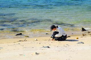 海岸で貝殻探しの写真・画像素材[3933841]
