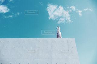 空を飛んでいる人の写真・画像素材[1030273]