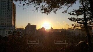 空,屋外,太陽,朝日,樹木,都会,高層ビル,正月,お正月,元旦,日の出,新年,初日の出,2021年,2021年 元旦