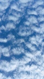 空を見たらの写真・画像素材[3942980]