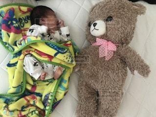 赤ちゃんとクマさんの写真・画像素材[3954932]