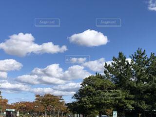 晴れた日の景色の写真・画像素材[3956665]