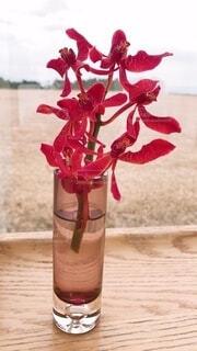 テーブルの上の花瓶に赤い花の写真・画像素材[3964059]