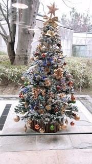 クリスマスの装飾がされたツリーの写真・画像素材[3964186]