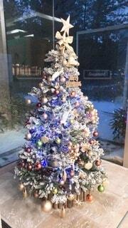 クリスマスツリーの写真・画像素材[3978173]
