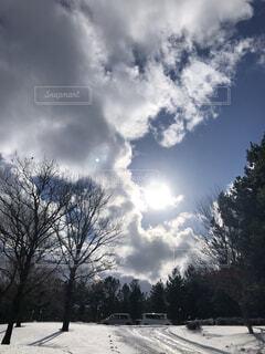 冬の晴れ間にまぶしい太陽の写真・画像素材[3987841]