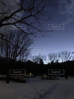 冬の夜空の写真・画像素材[3990067]