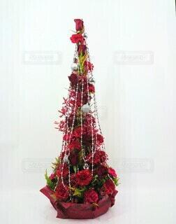 flower Christmasの写真・画像素材[3942201]