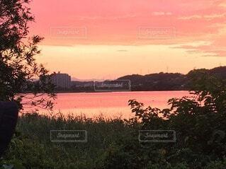 水の体に沈む夕日の写真・画像素材[3958221]