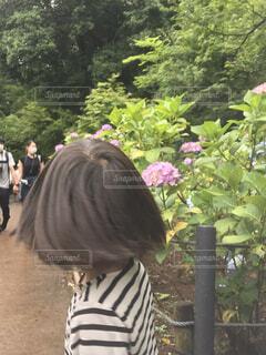 木の隣に立っている人の写真・画像素材[3959934]