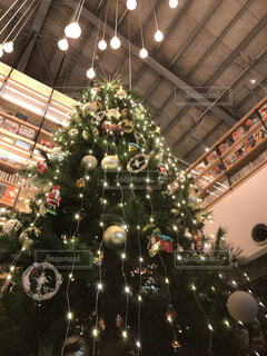 建物の前にクリスマスツリーが座っているの写真・画像素材[3985892]