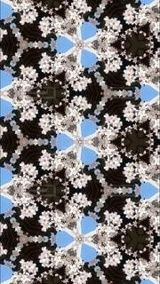 神社と桜と万華鏡の写真・画像素材[4027044]