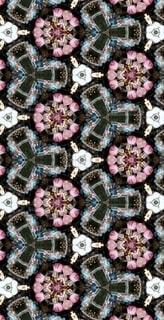 花,春,桜,ピンク,アート,花見,花びら,サクラ,満開,宴会,桜の花,桜の木,早春,万華鏡,春爛漫,さくら,行楽,開花,寒椿桜,早咲の桜