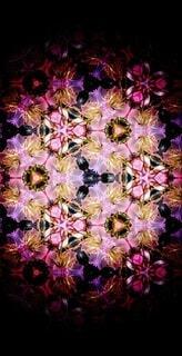花,春,桜,ピンク,アート,花見,花びら,サクラ,満開,宴会,草木,桜の花,桜の木,早春,万華鏡,春爛漫,さくら,行楽,開花,寒椿桜,早咲の桜