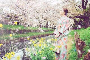 桜と菜の花と女性の写真・画像素材[4305945]