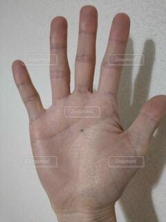 掌のど真ん中にホクロの写真・画像素材[3994990]