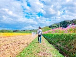 草原に立っている男の写真・画像素材[4124020]