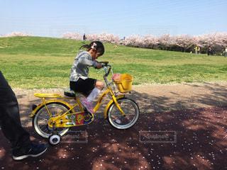 公園,お花見,兵庫県,自転車の練習,垂水健康公園