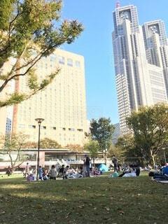 新宿の公園の写真・画像素材[3962272]