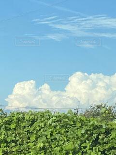 入道雲のある風景の写真・画像素材[4011297]