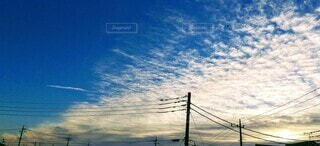 空,鳥,屋外,朝日,雲,青空,正月,お正月,日の出,電信柱,新年,初日の出,鱗雲,電柱線