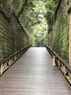 風景,橋,屋外,樹木,歩道,石,草木