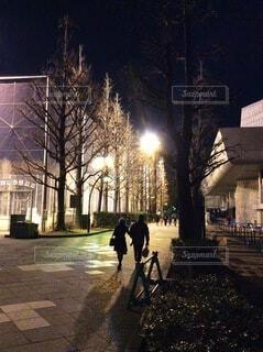 冬の夜道を歩くの写真・画像素材[4016888]
