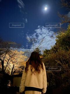 月を見上げる後ろ姿の写真・画像素材[3976691]